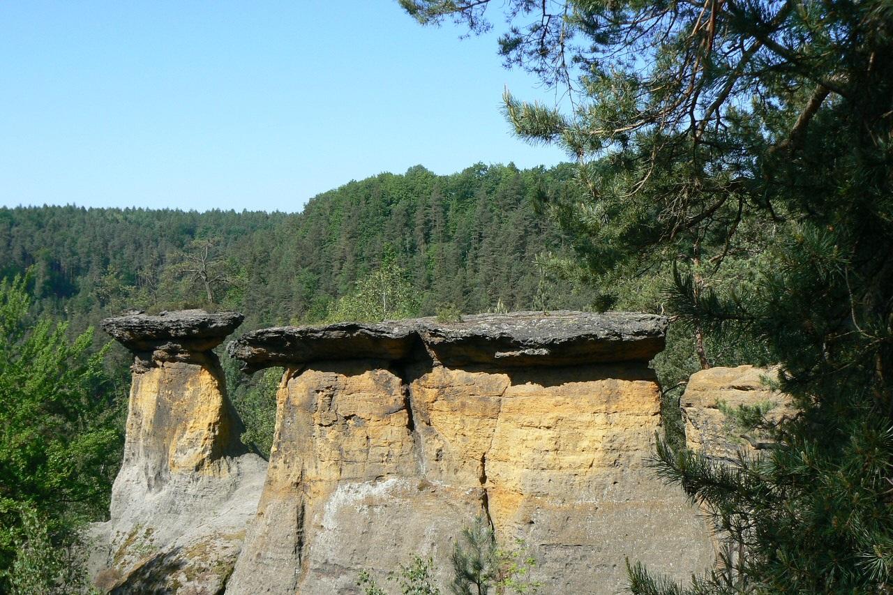 V okolí krásná příroda, stovky turistických cest, lesy, hrad Kokořín a hrad Houska.